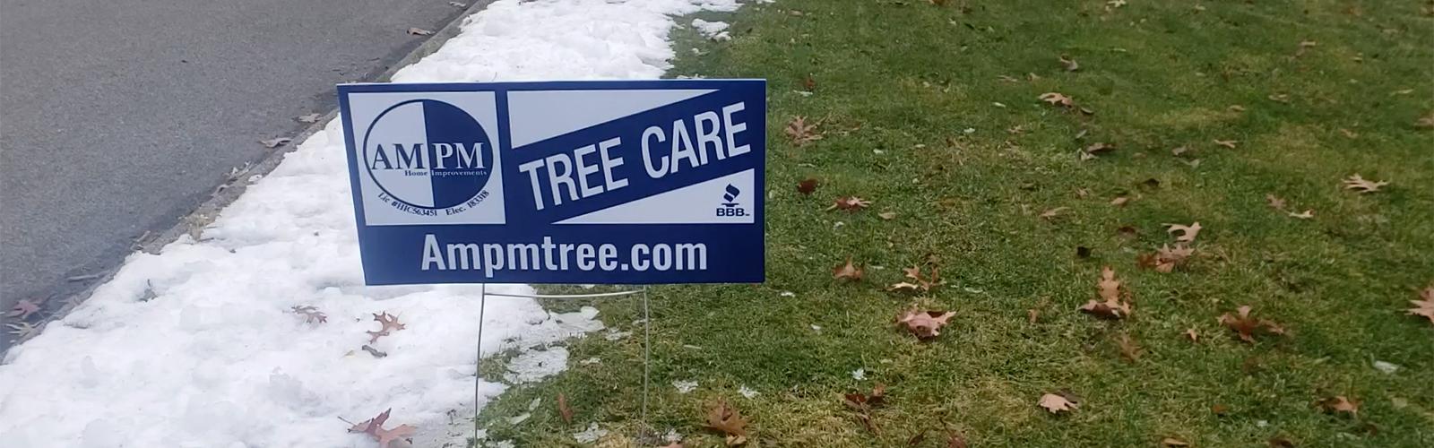 tree care companies near me