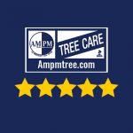 Tree Care CT Rating